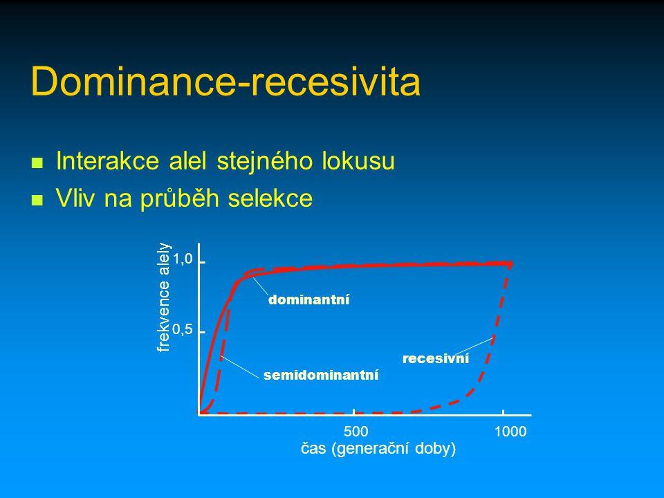 Dominance-recesivita Interakce alel stejného lokusu Vliv na průběh selekce recesivní dominantní semidominantní 0,5 1,0 5001000 čas (generační doby) fr