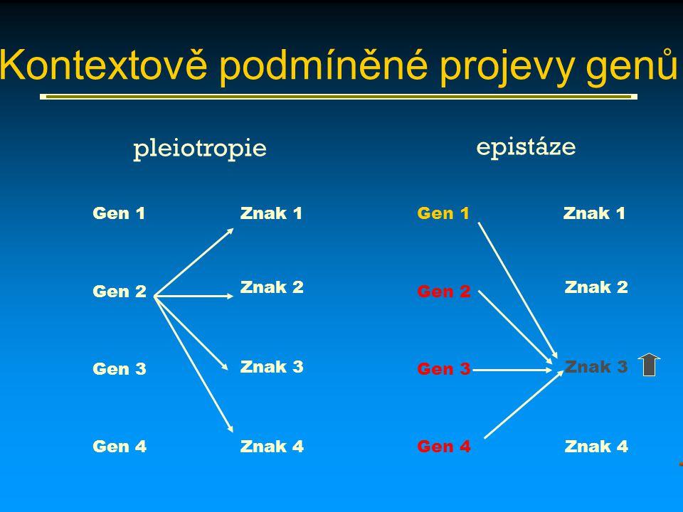 Gen 1 Gen 2 Gen 3 Gen 4 Znak 1 Znak 2 Znak 3 Znak 4 Gen 1 Gen 2 Gen 3 Gen 4 Znak 1 Znak 2 Znak 3 Znak 4 pleiotropie epistáze Kontextově podmíněné proj