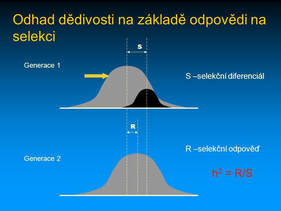 Odhad dědivosti na základě odpovědi na selekci S –selekční diferenciál R –selekční odpověď h 2 = R/S R S Generace 1 Generace 2
