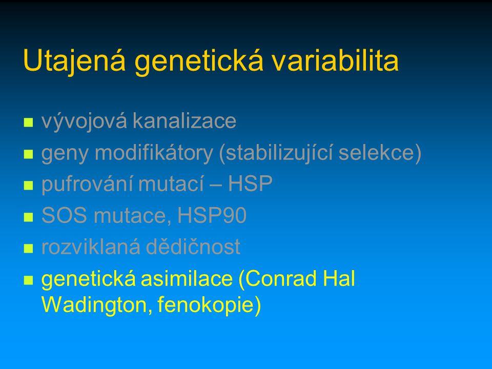 Utajená genetická variabilita vývojová kanalizace geny modifikátory (stabilizující selekce) pufrování mutací – HSP SOS mutace, HSP90 rozviklaná dědičn