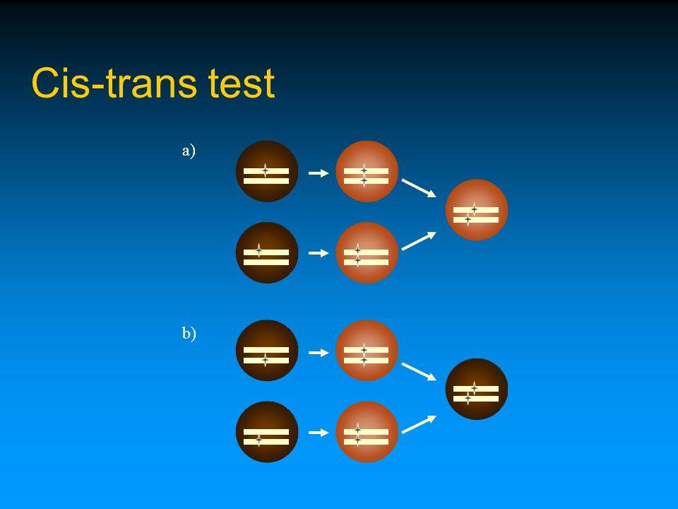a) b) Cis-trans test