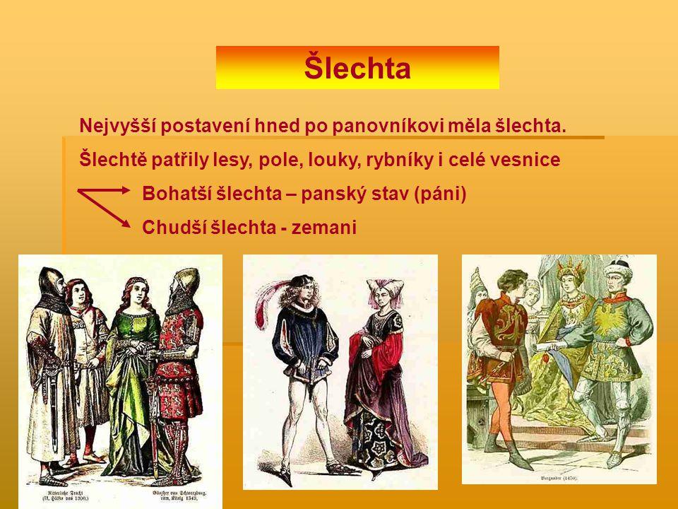 Nejvyšší postavení hned po panovníkovi měla šlechta. Šlechtě patřily lesy, pole, louky, rybníky i celé vesnice Bohatší šlechta – panský stav (páni) Ch