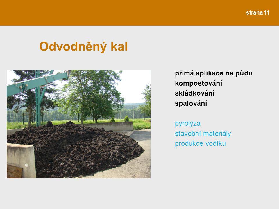 strana 11 Odvodněný kal přímá aplikace na půdu kompostování skládkování spalování pyrolýza stavební materiály produkce vodíku