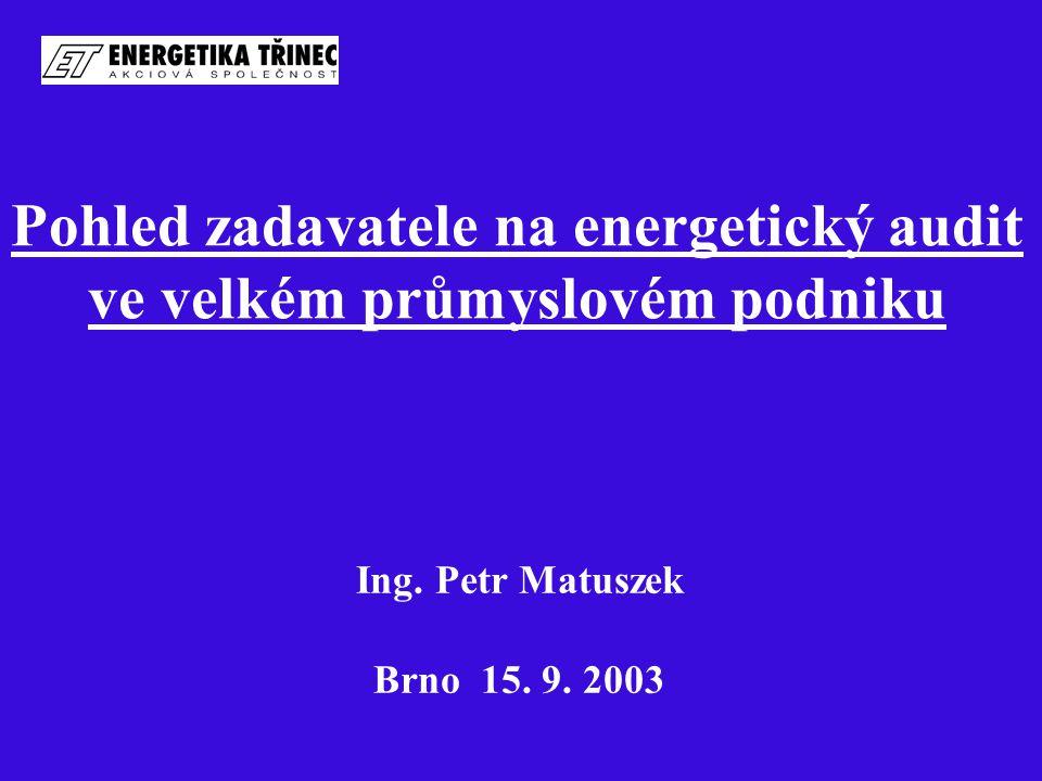 Pohled zadavatele na energetický audit ve velkém průmyslovém podniku Ing. Petr Matuszek Brno 15. 9. 2003