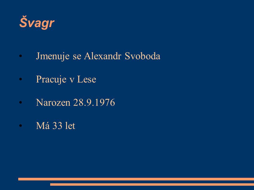 Švagr Jmenuje se Petr Novák Pracuje,montuje ve firmě novakokna Narozen 20.4.1979 Má 30 let Zájmy:Fotbal