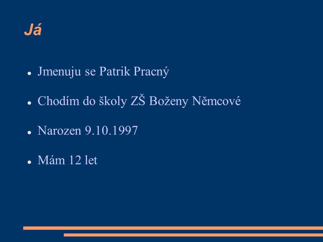 Já Jmenuju se Patrik Pracný Chodím do školy ZŠ Boženy Němcové Narozen 9.10.1997 Mám 12 let
