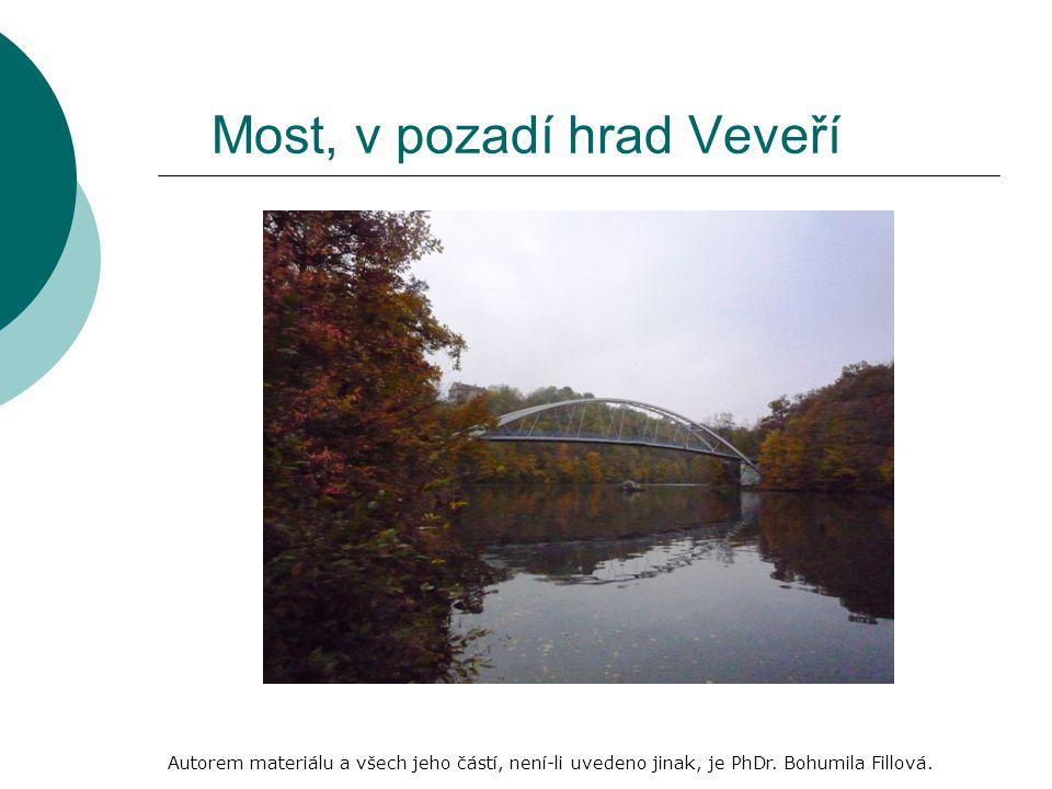 Most, v pozadí hrad Veveří Autorem materiálu a všech jeho částí, není-li uvedeno jinak, je PhDr.