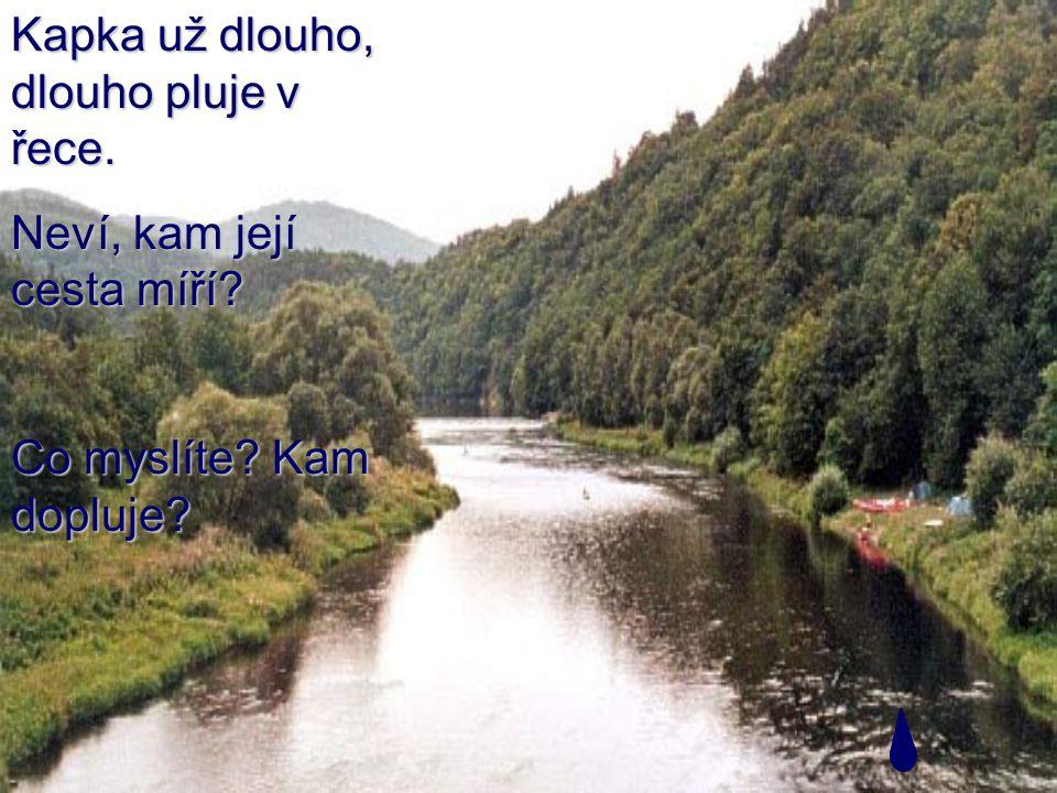 Kapka už dlouho, dlouho pluje v řece. Neví, kam její cesta míří Co myslíte Kam dopluje