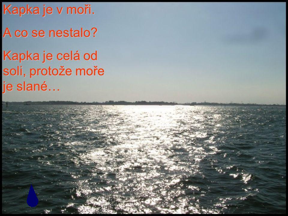 Kapka je v moři. A co se nestalo Kapka je celá od soli, protože moře je slané…