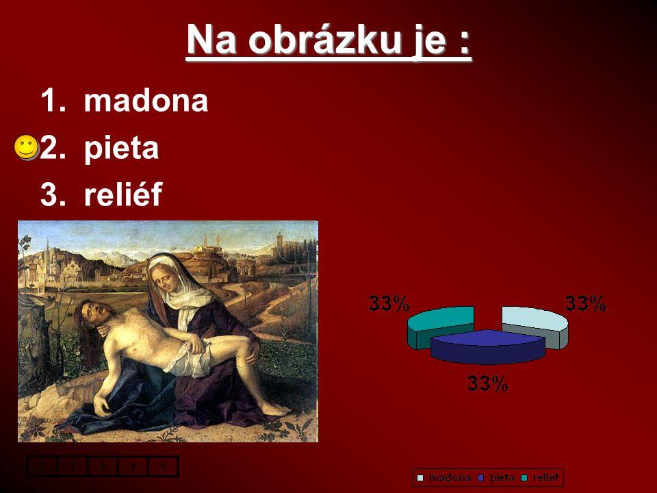 Na obrázku je : 1.madona 2.pieta 3.reliéf 12345