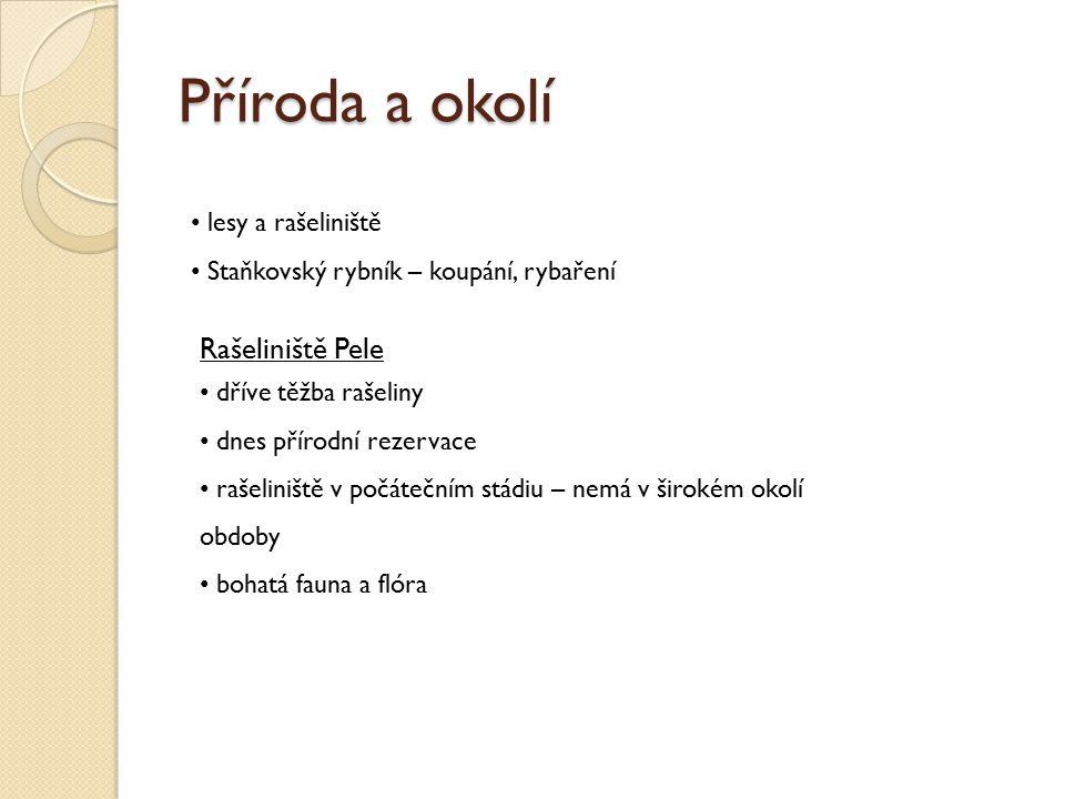 Rašeliniště Pele Jana Zahradníková 12.9.2011