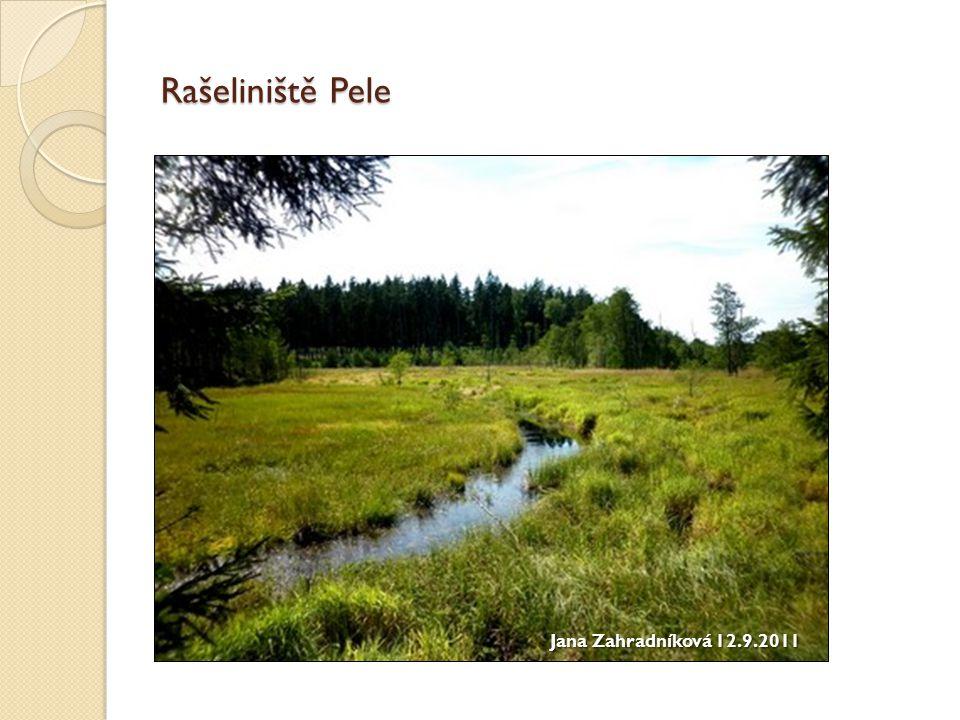 Staňkovský rybník rok založení: 1550 dříve – Soused – Velký Bystřický rybník stavitel: Mikuláš Ruthard z Malešova hloubka: 8,5 m rozloha: 241 ha hlavní účel: rekreace, rybaření