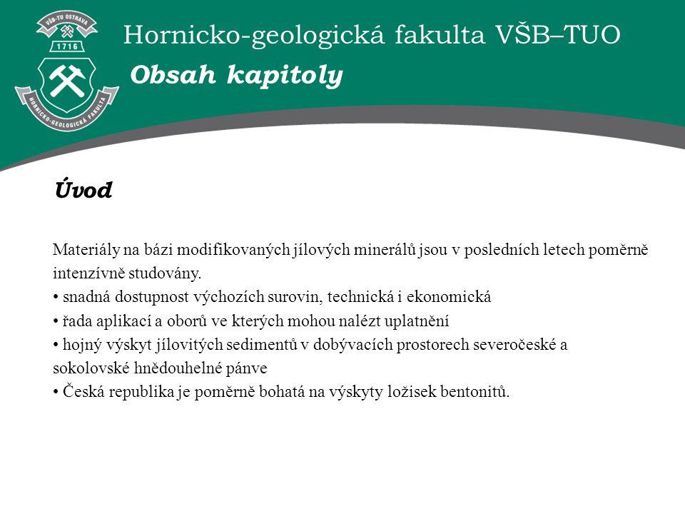 Hornicko-geologická fakulta VŠB–TUO Úvod Materiály na bázi modifikovaných jílových minerálů jsou v posledních letech poměrně intenzívně studovány.