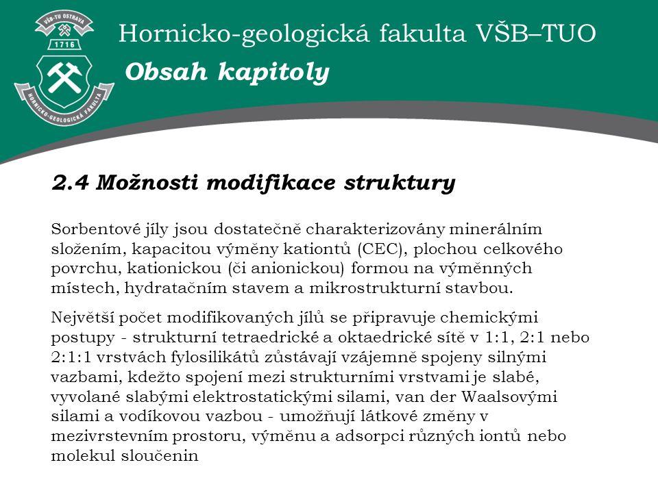 Hornicko-geologická fakulta VŠB–TUO Obsah kapitoly 2.4 Možnosti modifikace struktury Sorbentové jíly jsou dostatečně charakterizovány minerálním složením, kapacitou výměny kationtů (CEC), plochou celkového povrchu, kationickou (či anionickou) formou na výměnných místech, hydratačním stavem a mikrostrukturní stavbou.