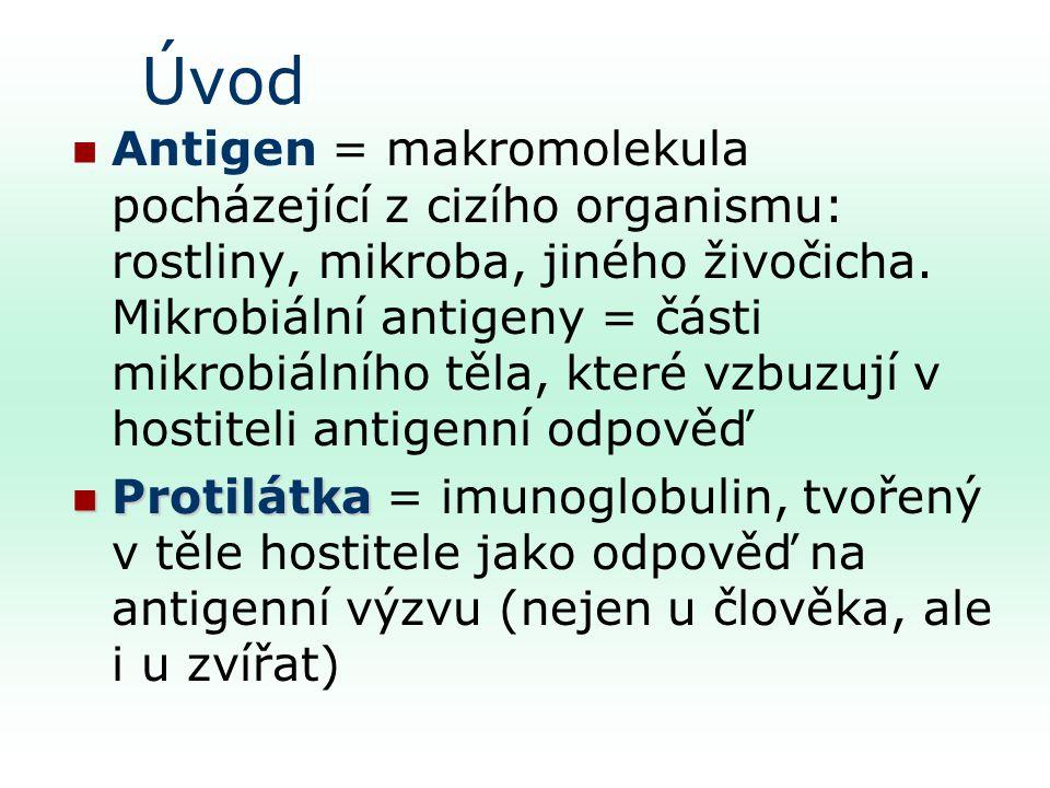 Úvod Antigen = makromolekula pocházející z cizího organismu: rostliny, mikroba, jiného živočicha.