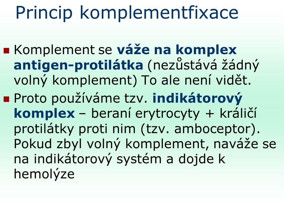 Princip komplementfixace Komplement se váže na komplex antigen-protilátka (nezůstává žádný volný komplement) To ale není vidět.