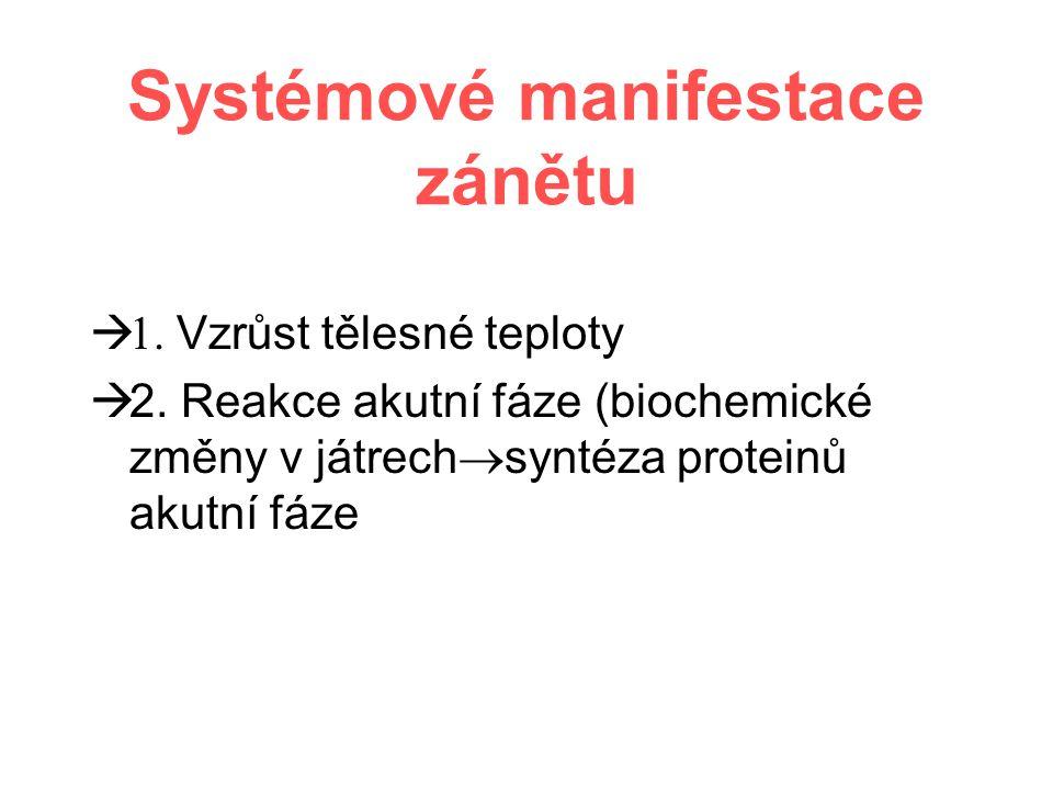 Systémové manifestace zánětu  1. Vzrůst tělesné teploty  2.