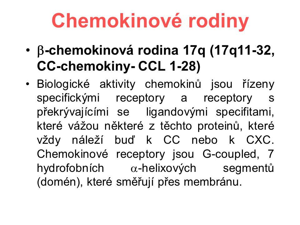 Chemokinové rodiny  -chemokinová rodina 17q (17q11-32, CC-chemokiny- CCL 1-28) Biologické aktivity chemokinů jsou řízeny specifickými receptory a receptory s překrývajícími se ligandovými specifitami, které vážou některé z těchto proteinů, které vždy náleží buď k CC nebo k CXC.