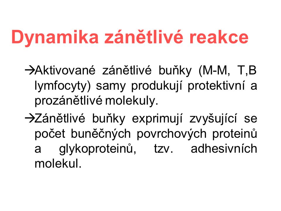 Dynamika zánětlivé reakce  Aktivované zánětlivé buňky (M-M, T,B lymfocyty) samy produkují protektivní a prozánětlivé molekuly.