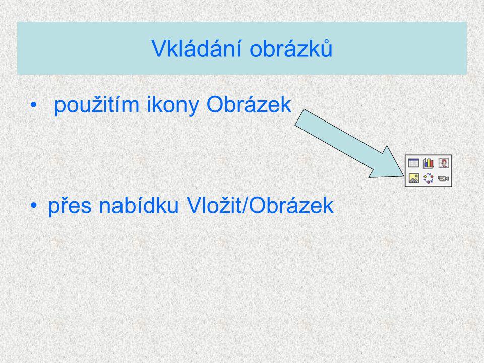 Vkládání obrázků použitím ikony Obrázek přes nabídku Vložit/Obrázek