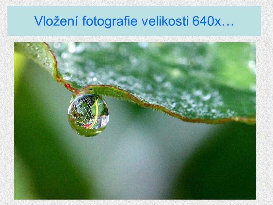 Vložení fotografie velikosti 640x…
