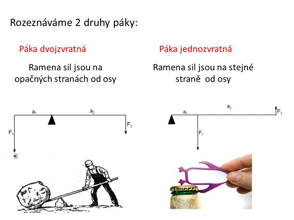 Rozeznáváme 2 druhy páky: Páka dvojzvratnáPáka jednozvratná Ramena sil jsou na opačných stranách od osy Ramena sil jsou na stejné straně od osy