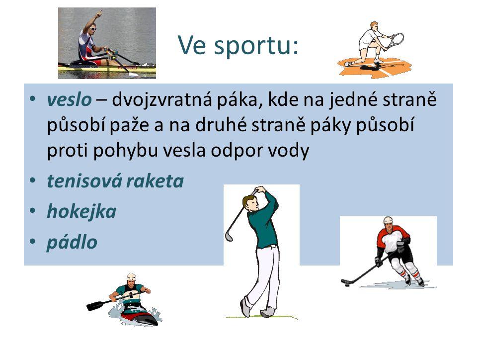 Ve sportu: veslo – dvojzvratná páka, kde na jedné straně působí paže a na druhé straně páky působí proti pohybu vesla odpor vody tenisová raketa hokej