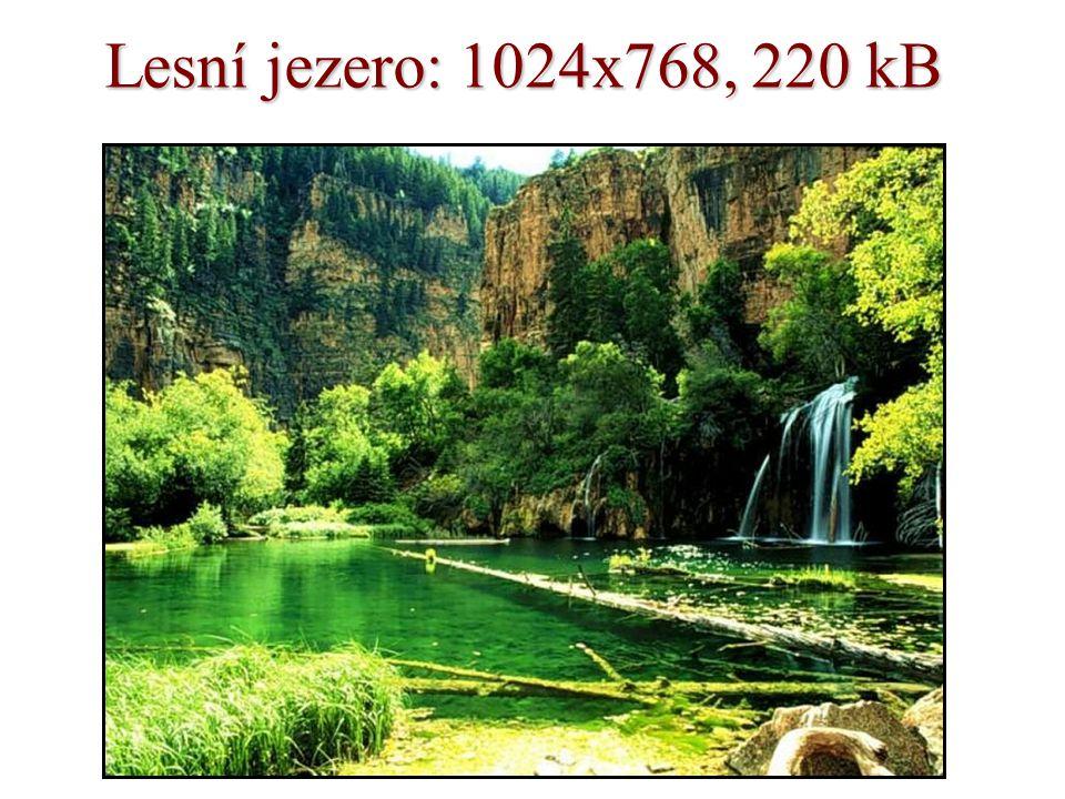 Lesní jezero: 1024x768, 220 kB