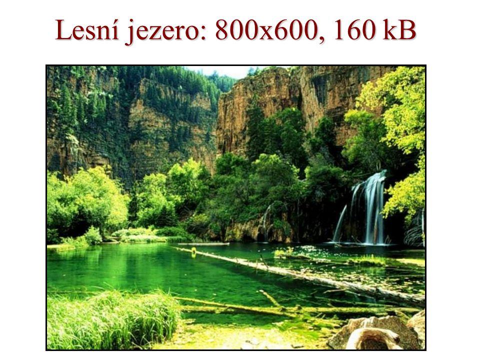 Lesní jezero: 800x600, 160 kB