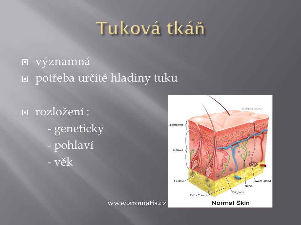  významná  potřeba určité hladiny tuku  rozložení : - geneticky - pohlaví - věk www.aromatis.cz
