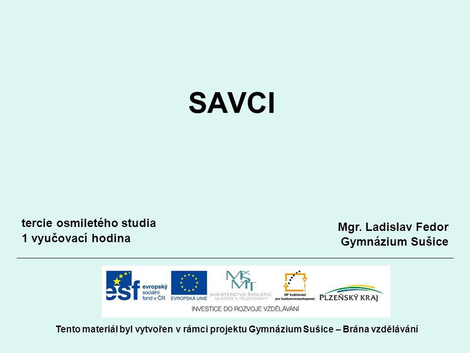 SAVCI Tento materiál byl vytvořen v rámci projektu Gymnázium Sušice – Brána vzdělávání Mgr.