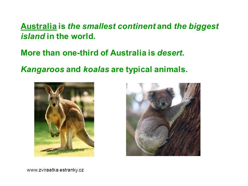 Sydney -is the biggest city in Australia.