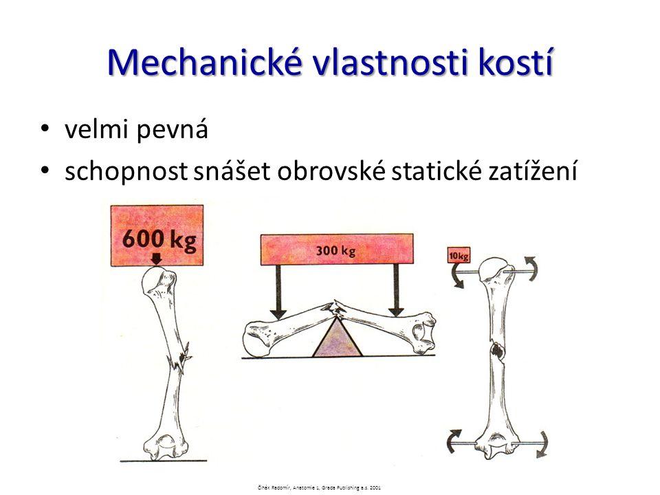 Mechanické vlastnosti kostí velmi pevná schopnost snášet obrovské statické zatížení Čihák Radomír, Anatomie 1, Grada Publishing a.s. 2001