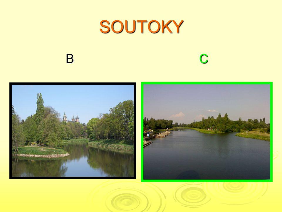 SOUTOKY B C B C