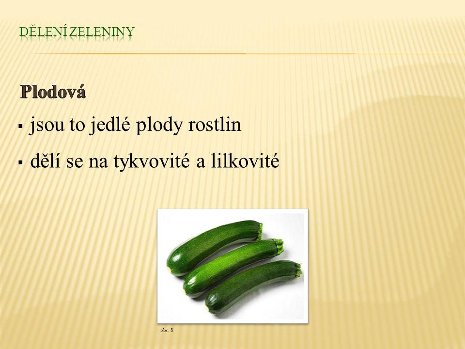  jsou to jedlé plody rostlin  dělí se na tykvovité a lilkovité obr. 8