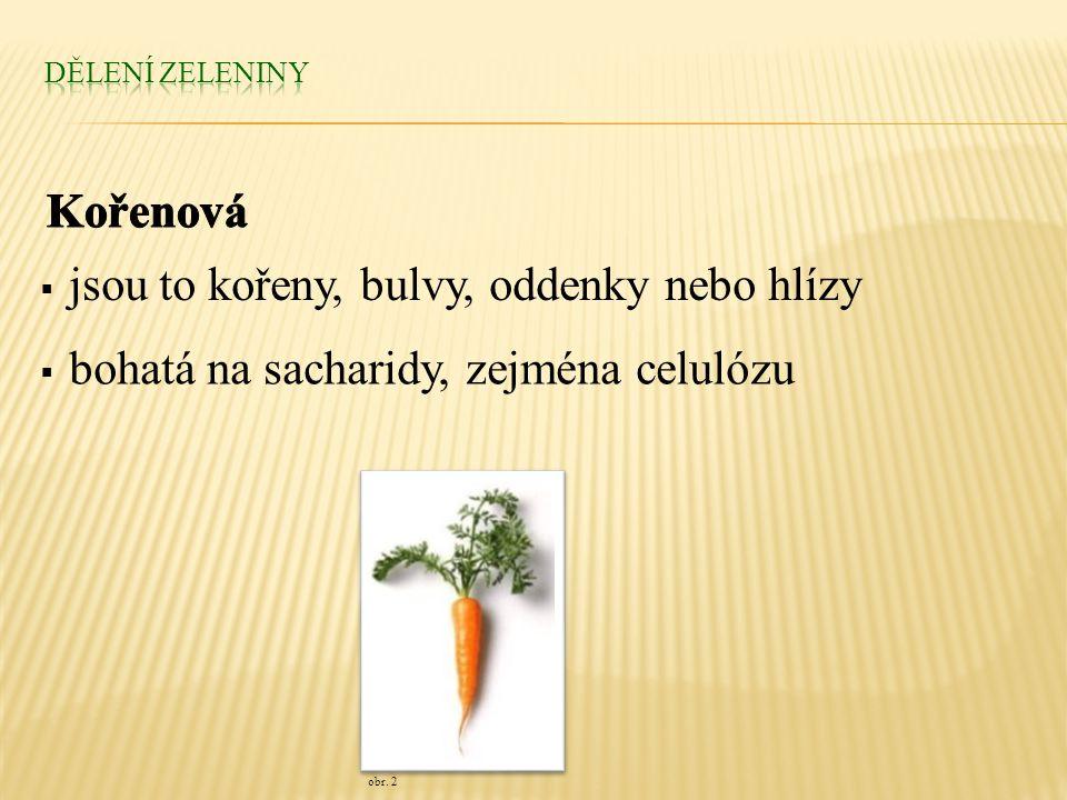  jsou to kořeny, bulvy, oddenky nebo hlízy  bohatá na sacharidy, zejména celulózu obr. 2