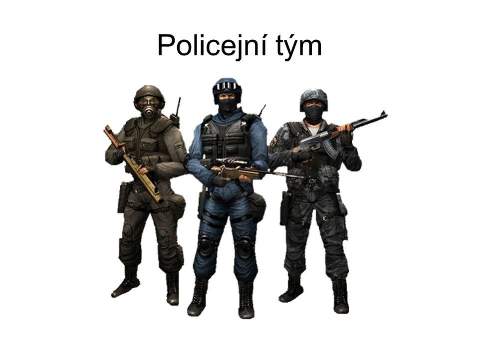 Policejní tým