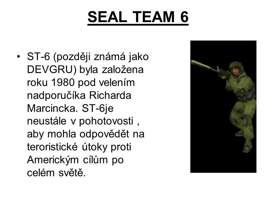 SEAL TEAM 6 ST-6 (později známá jako DEVGRU) byla založena roku 1980 pod velením nadporučíka Richarda Marcincka. ST-6je neustále v pohotovosti, aby mo