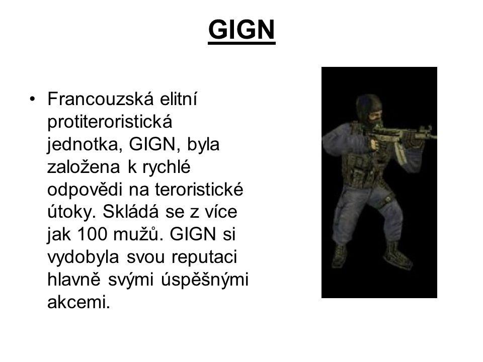 GIGN Francouzská elitní protiteroristická jednotka, GIGN, byla založena k rychlé odpovědi na teroristické útoky. Skládá se z více jak 100 mužů. GIGN s