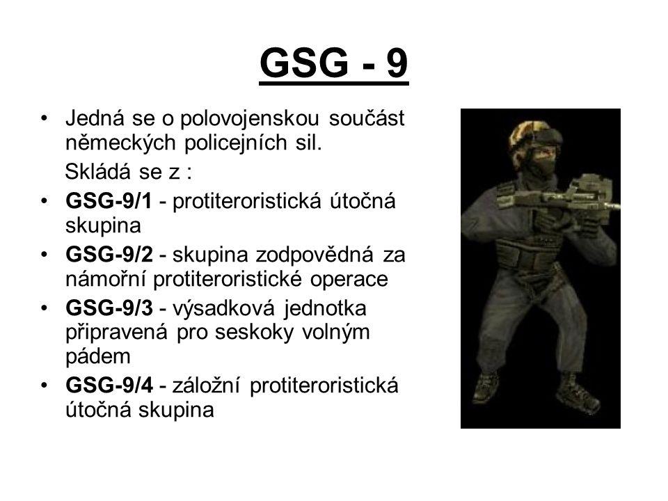 GSG - 9 Jedná se o polovojenskou součást německých policejních sil. Skládá se z : GSG-9/1 - protiteroristická útočná skupina GSG-9/2 - skupina zodpově