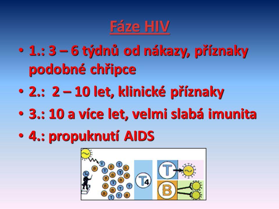 Fáze HIV 1.: 3 – 6 týdnů od nákazy, příznaky podobné chřipce 1.: 3 – 6 týdnů od nákazy, příznaky podobné chřipce 2.: 2 – 10 let, klinické příznaky 2.: 2 – 10 let, klinické příznaky 3.: 10 a více let, velmi slabá imunita 3.: 10 a více let, velmi slabá imunita 4.: propuknutí AIDS 4.: propuknutí AIDS