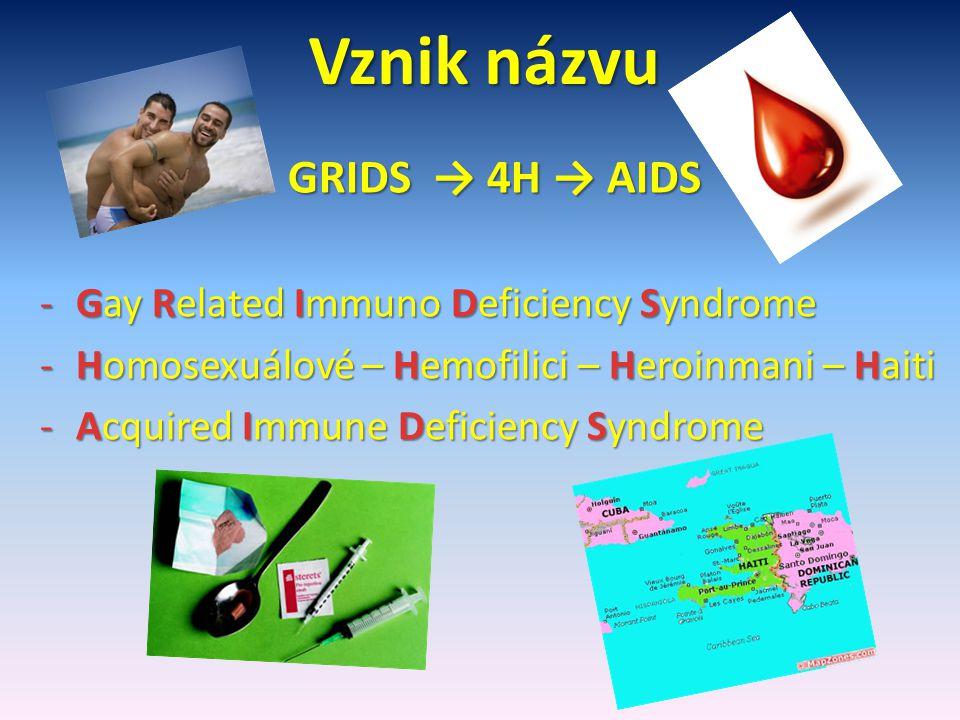 VIRUS HIV Human Immunodeficiency Virus = Lidský virus selhání imunity