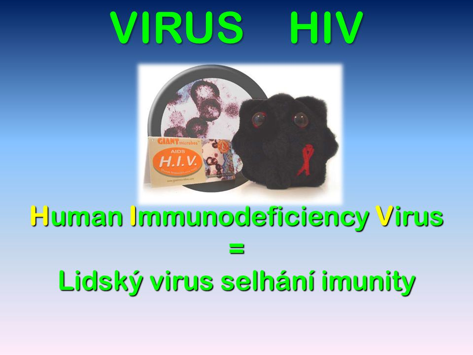 Charakteristika HIV R.1984: objeven R.