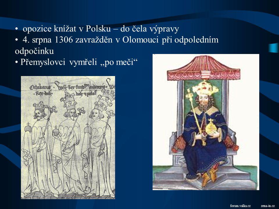 (vl. 1305 – 1306) xtree.czao-institut.cz U hrobu otcova ve Zbraslavi vzdělaný – uměl latinsky, německy, česky český, polský a uherský král vzdal se uh