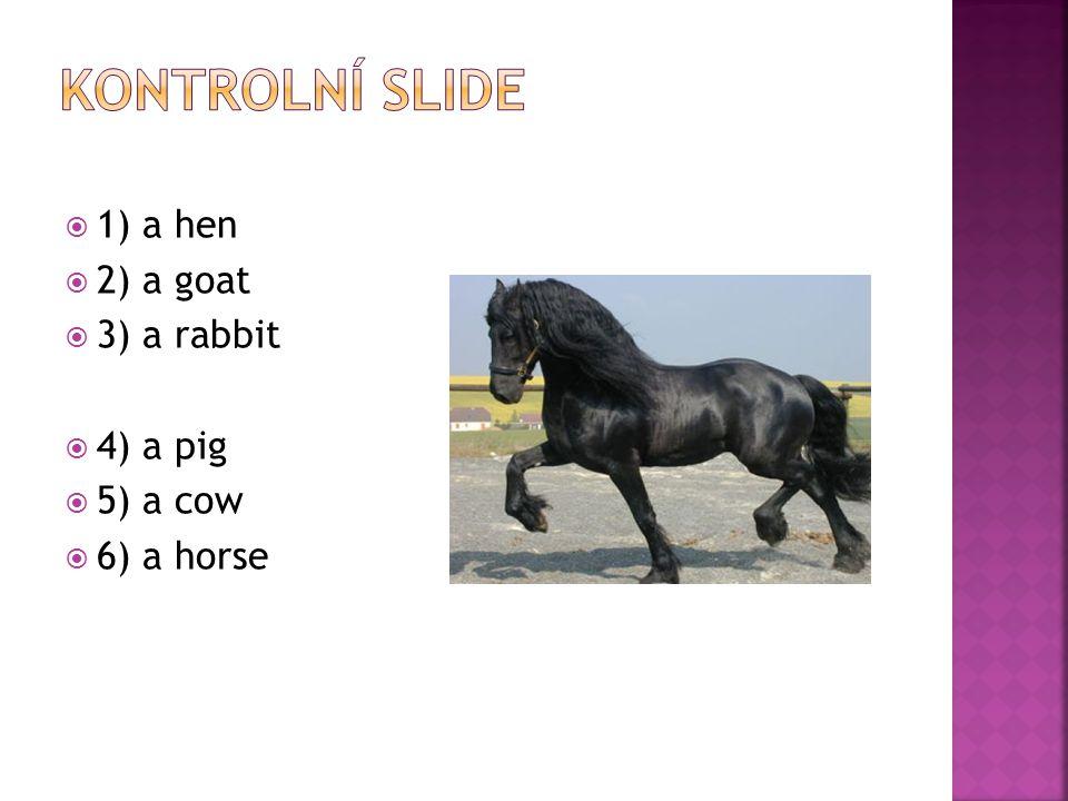  1) a hen  2) a goat  3) a rabbit  4) a pig  5) a cow  6) a horse