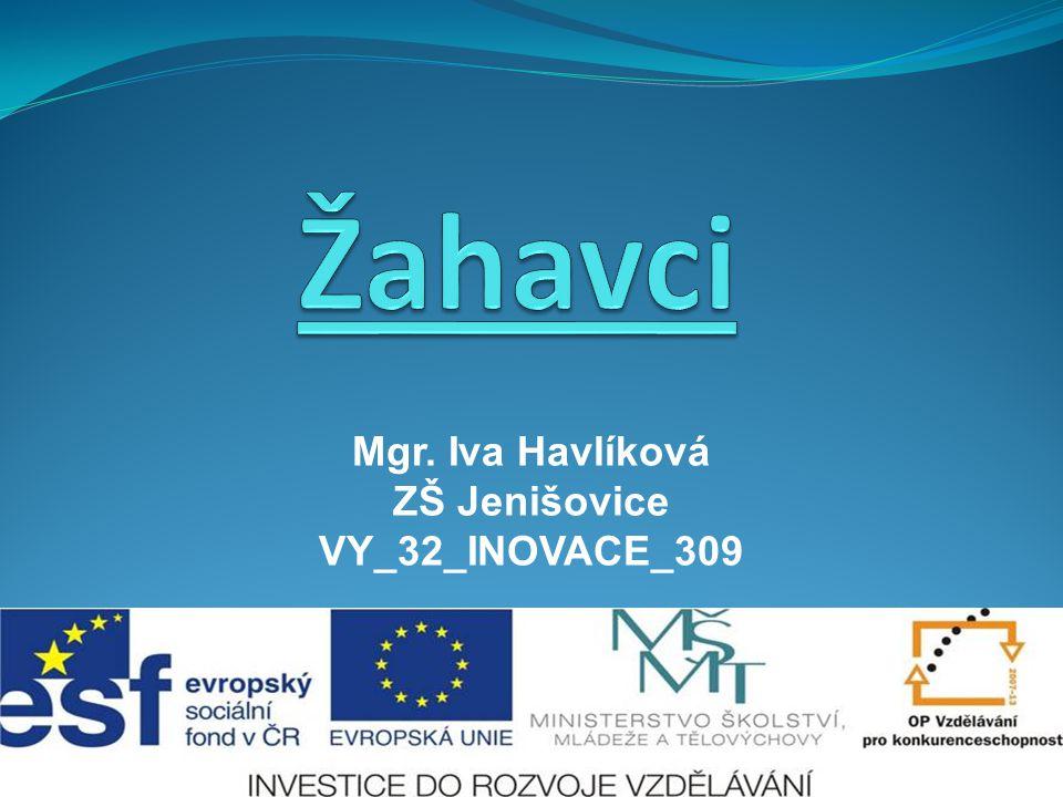Mgr. Iva Havlíková ZŠ Jenišovice VY_32_INOVACE_309