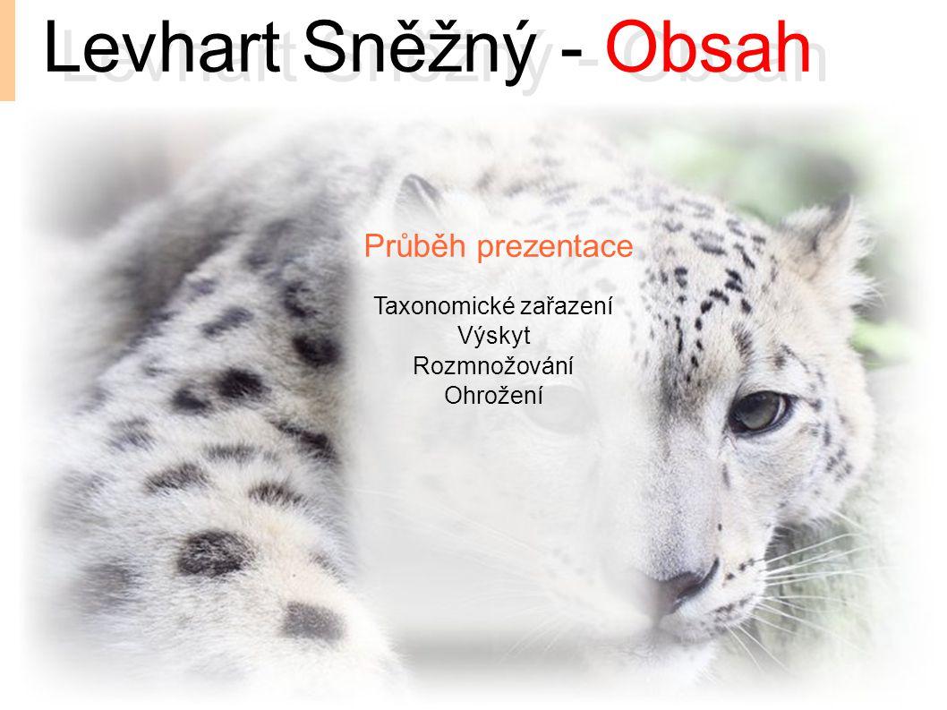 Průběh prezentace Levhart Sněžný - Obsah Taxonomické zařazení Výskyt Rozmnožování Ohrožení