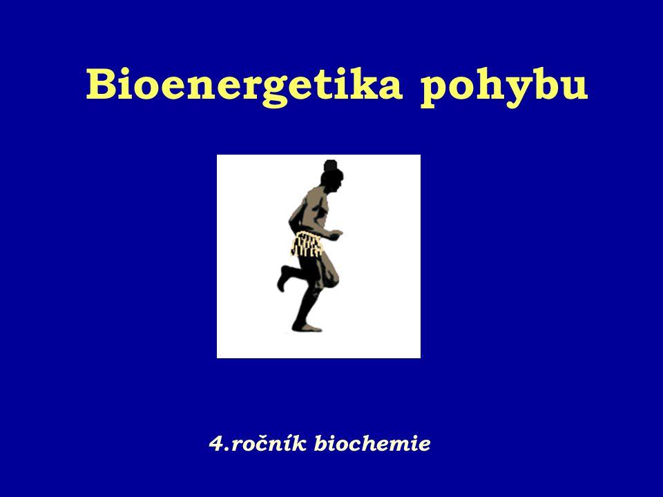 Bioenergetika pohybu 4.ročník biochemie