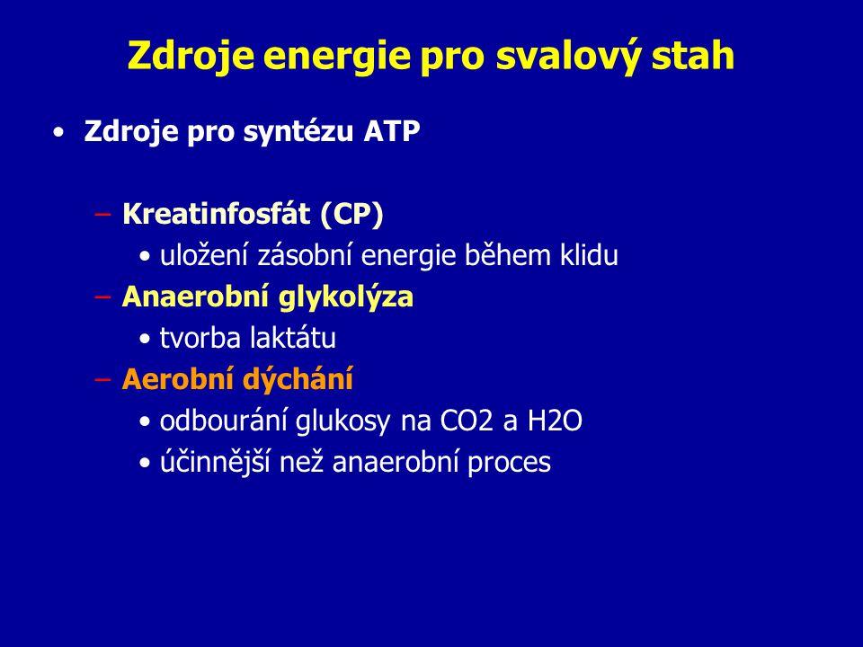 Zdroje energie pro svalový stah Zdroje pro syntézu ATP –Kreatinfosfát (CP) uložení zásobní energie během klidu –Anaerobní glykolýza tvorba laktátu –Aerobní dýchání odbourání glukosy na CO2 a H2O účinnější než anaerobní proces