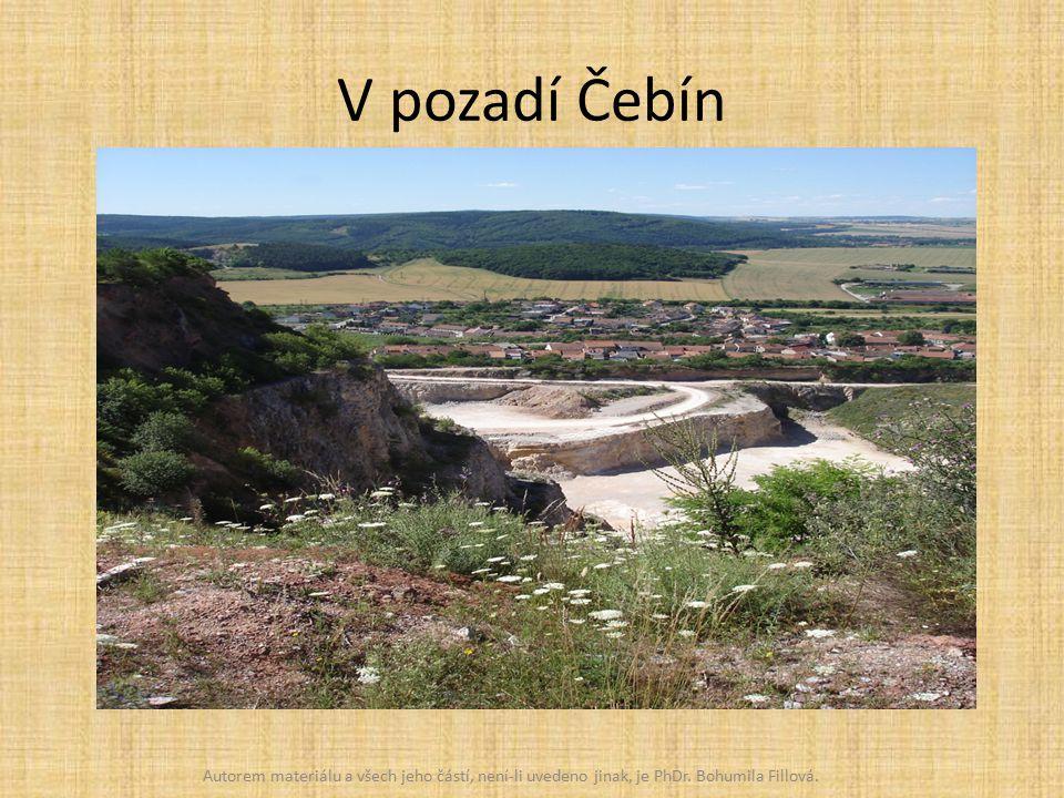 V pozadí Čebín Autorem materiálu a všech jeho částí, není-li uvedeno jinak, je PhDr.